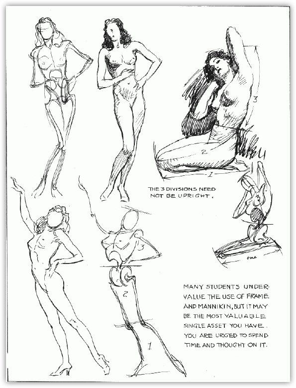 Dibujando El Cuerpo Humano Conoce Imagina